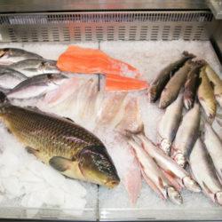 Simmerding Fischerei